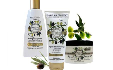 bodegon divine olive
